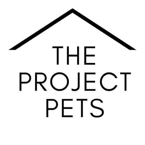 The Project Pets